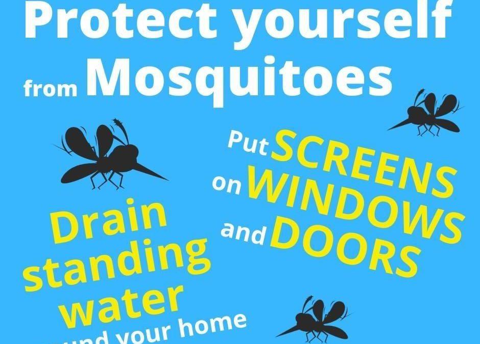Mosquito Awareness