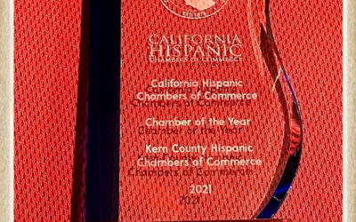 Chamber of The Year Award
